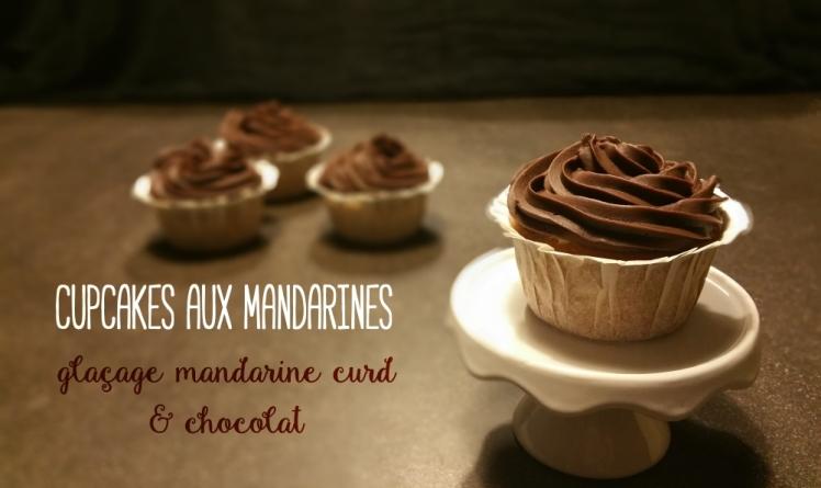 cupcake_mandarine_choco_titre