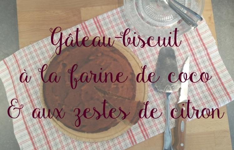 gateau_biscuit_1